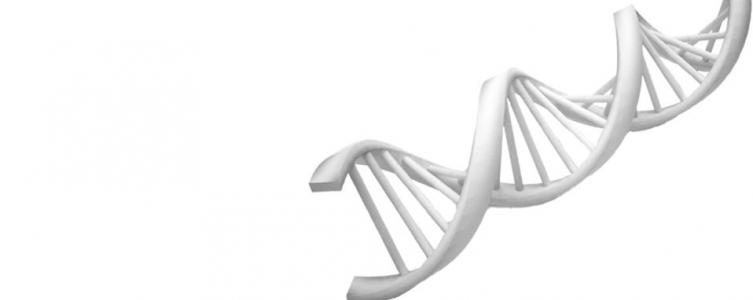 Sistemas Genómicos